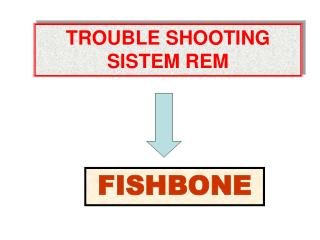 TROUBLE SHOOTING SISTEM REM