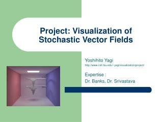 Project: Visualization of Stochastic Vector Fields