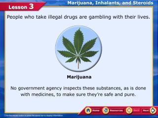 Marijuana, Inhalants, and Steroids