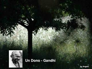 Un dono Gandhi