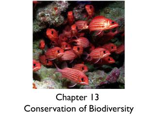 Chapter 13  Conservation of Biodiversity