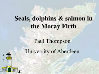 Seals, dolphins & salmon in the Moray Firth