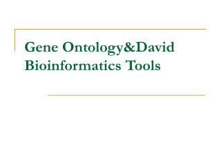 Gene Ontology&David Bioinformatics Tools