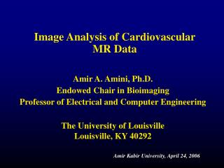 Image Analysis of Cardiovascular MR Data
