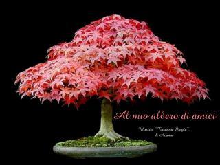 """Al mio albero di amici Musica: """"Toscana Magic"""", di Acama"""
