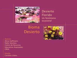 Bioma Desierto