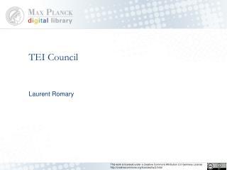 TEI Council
