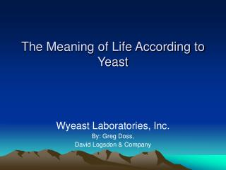 The Meaning of Life According to Yeast