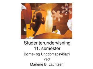 Studenterundervisning  11. semester