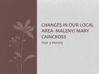 Changes in Our local area-  Maleny / Mary  caincross