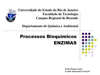 Processos Bioquímicos ENZIMAS