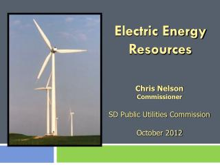 Electric Energy Resources