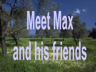 Meet Max and his friends