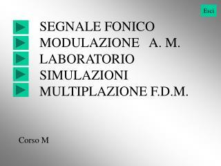 SEGNALE FONICO MODULAZIONE   A. M. LABORATORIO SIMULAZIONI MULTIPLAZIONE F.D.M.