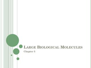 Large Biological Molecules