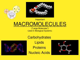 "Important MACROMOLECULES (""Large Molecules"") Used in Biological Systems:"