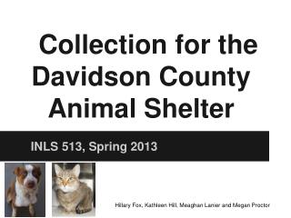 Collection for the Davidson County Animal Shelter