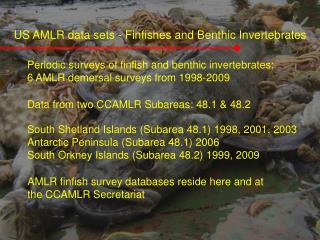 US AMLR data sets - Finfishes and Benthic Invertebrates