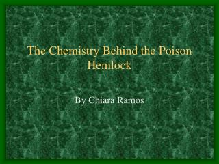 The Chemistry Behind the Poison Hemlock