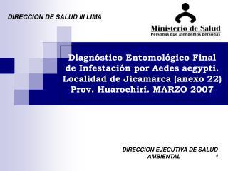 DIRECCION DE SALUD III LIMA