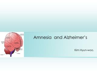 Amnesia  and Alzheimer's