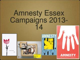 Amnesty Essex Campaigns 2013-14