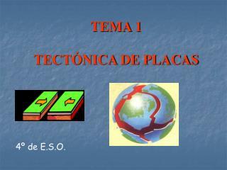 TEMA 1 TECTÓNICA DE PLACAS