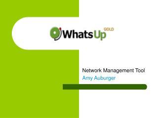 Network Management Tool Amy Auburger