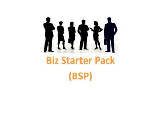 Biz Starter Pack  (BSP)