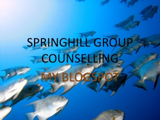 SPRINGHILL GROUP COUNSELLING - My Blogspot