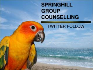 SPRINGHILL GROUP COUNSELLING - Twitter Account