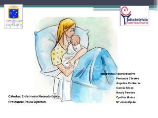 Integrantes: Valeria Becerra Fernanda Cáceres Angeline Contreras Camila Erices Nataly Paredes