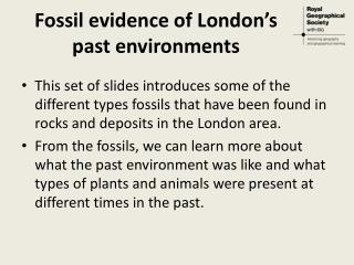 Fossil evidence of London's  past environments