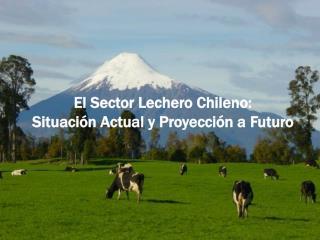 El Sector Lechero Chileno: Situación Actual y Proyección a Futuro