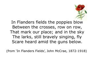 In Flanders fields the poppies blow Between the crosses, row on row,
