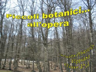 Piccoli botanici... all'opera