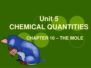 Unit 5 CHEMICAL QUANTITIES