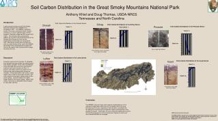 Soil Carbon Distribution in the Great Smoky Mountains National Park