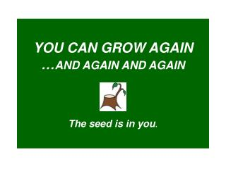 YOU CAN GROW AGAIN … AND AGAIN AND AGAIN The seed is in you .