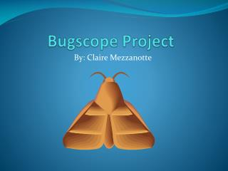 Bugscope  Project