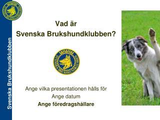 Vad är  Svenska Brukshundklubben? Ange vilka presentationen hålls för Ange datum