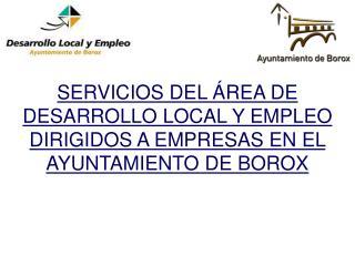 SERVICIOS DEL ÁREA DE DESARROLLO LOCAL Y EMPLEO DIRIGIDOS A EMPRESAS EN EL AYUNTAMIENTO DE BOROX