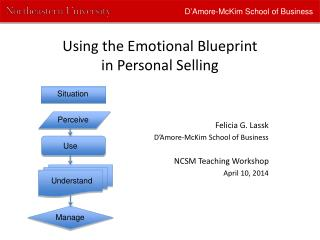 Using the Emotional Blueprint  in Personal Selling