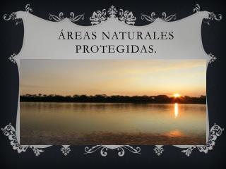 Áreas Naturales Protegidas.