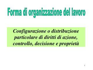 Forma di organizzazione del lavoro