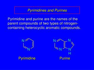 Pyrimidines and Purines