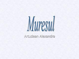 Artudean Alexandra