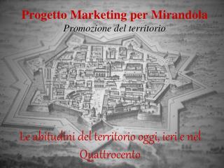 Progetto Marketing per Mirandola Promozione del territorio