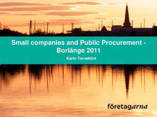 Small companies and Public  Procurement  -  Borlänge 2011