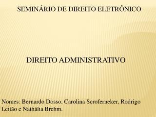 SEMINÁRIO DE DIREITO ELETRÔNICO DIREITO ADMINISTRATIVO